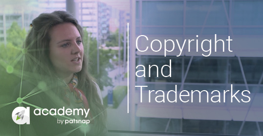 Copyright, trademarks and design rights